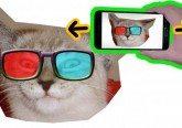 Cat youtube